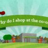 Tidal Creek Coop - What is a Coop